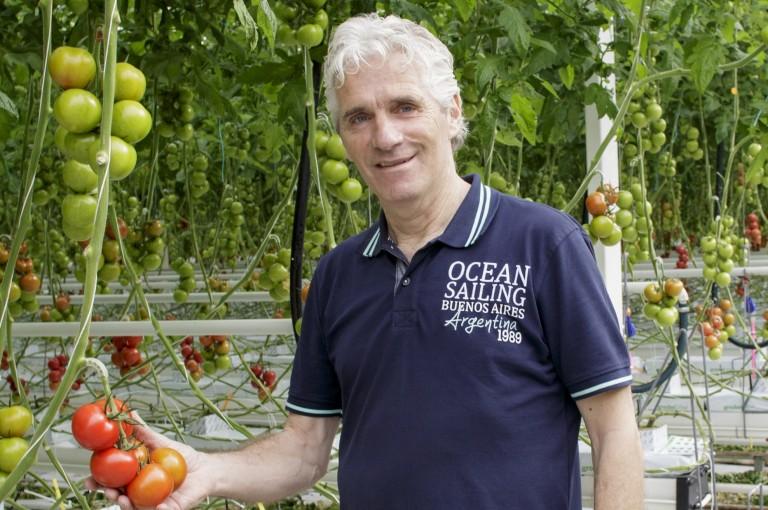 Trial Center Tomato